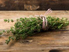 Le bouquet de thym pour vos infusions